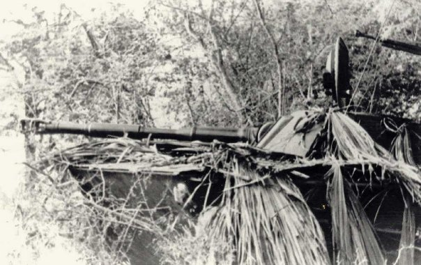 PT-76 dalam kamuflase