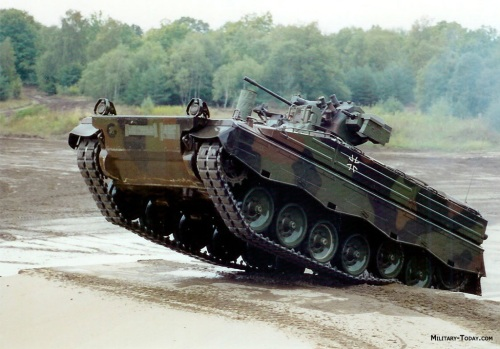 Marder in Action