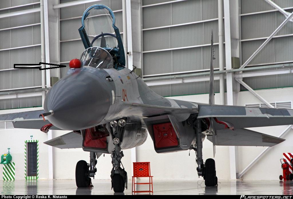 TS-2704-Sukhoi-Su-27_PlanespottersNet_307059