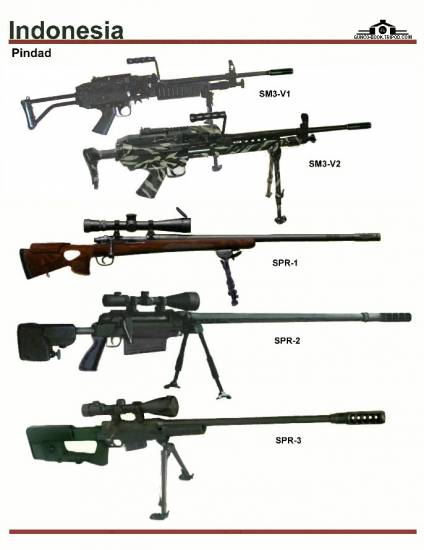 Beberapa produk senjata laras panjang buatan PT Pindad.