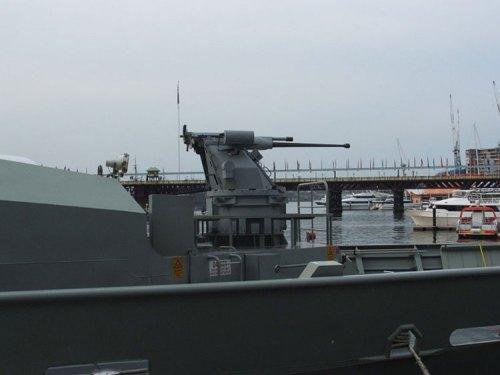 Kanon Bushmaster kaliber 25 mm pada haluan.